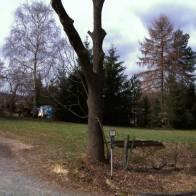 Grundstück in Niederwiesa